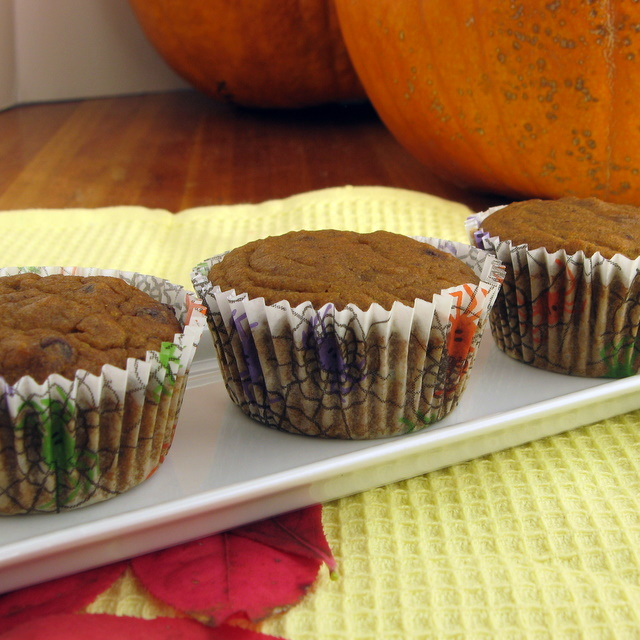 Pumpkin Chocolate Chip Muffins - a Taste of Fall