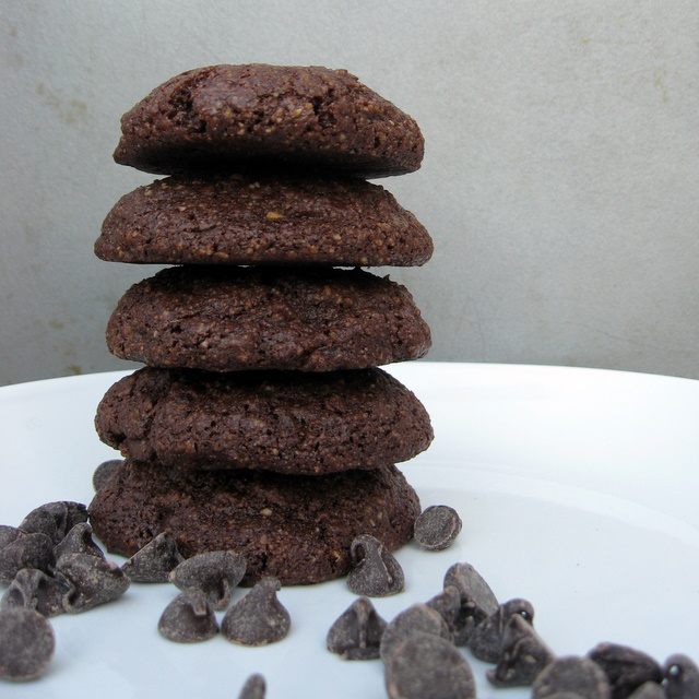 Nut-free, vegan, grain-free Chocolate Chocolate Chip cookies